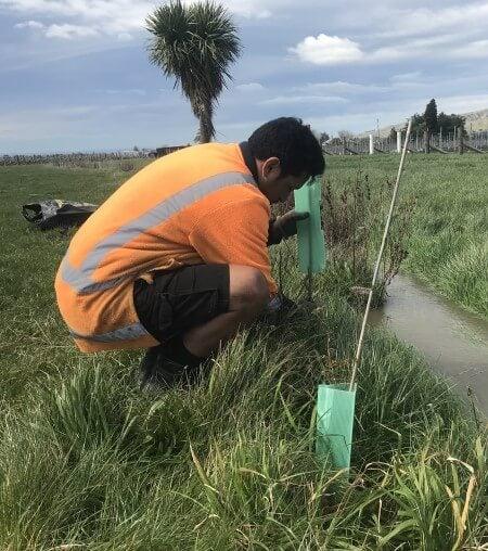 Riparian Planting Prw Nz 2019 1 (1)