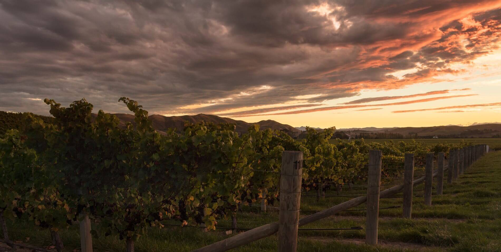 sunset at stoneleigh